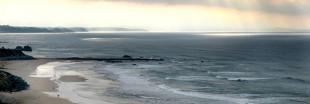 L'Aquitaine répare ses dunes rongées par l'érosion