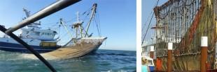 La pêche électrique va-t-elle débarquer en France ?