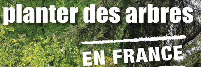 10 bonnes raisons de planter des arbres en France