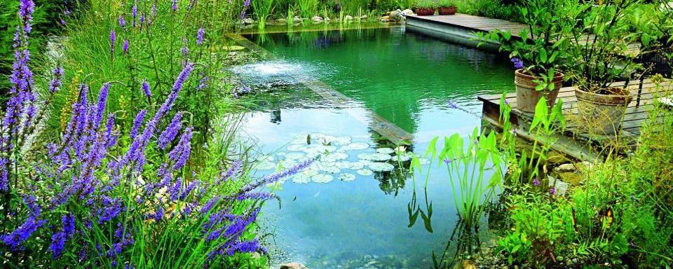 Pour se baigner au naturel optez pour la piscine for Bache pour piscine naturelle