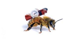 abeilles-arretons-le-massacre-petition-01