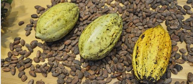 cacao-chocolat pénurie