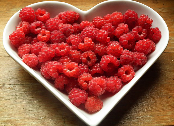 framboise-fruit-antioxydant-bienfaits-06