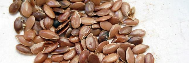 grignotage graines lin