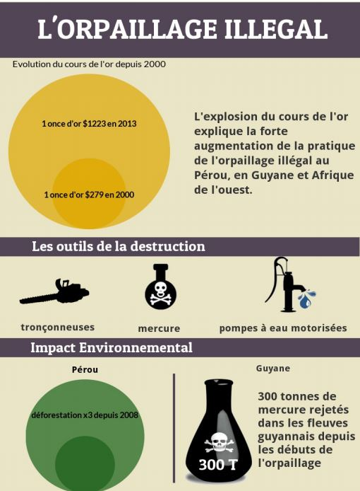 infographie orpaillage illegal