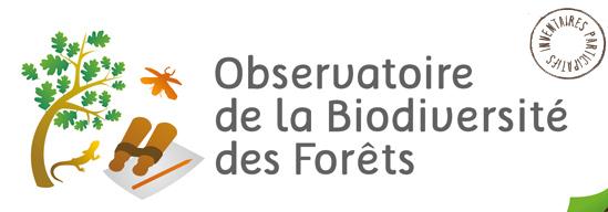 observatoire-de-la-biodiversite-des-forets-01
