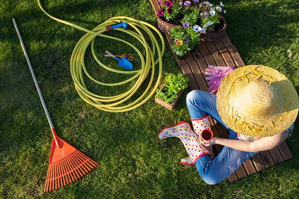 tondre la pelouse: tondre le dimanche