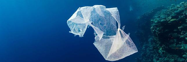 Le sac plastique biodégradable se généralise en France