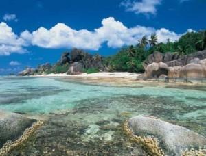Atoll d'Aldabra 1