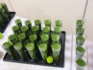 smoothie farines microalgues
