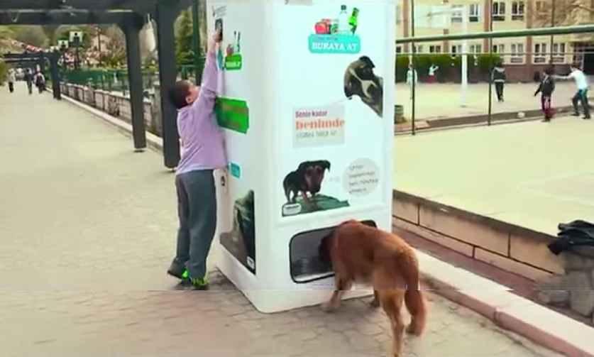 distributeur-nourriture-recyclage-plastique-01