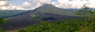 Déforestation : le Brésil dépassé par l'Indonésie