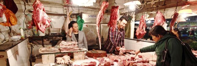Chine : les animaux menacés finissent toujours à la marmite !