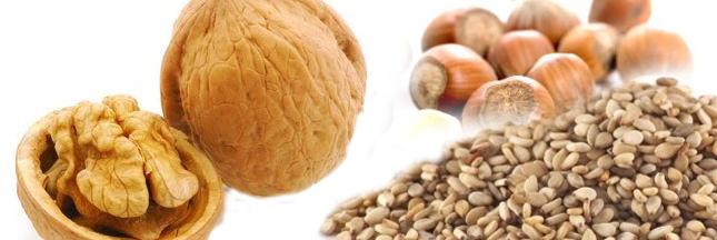 Cancer, arrêt cardiaque : étude sur les bénéfices des noix