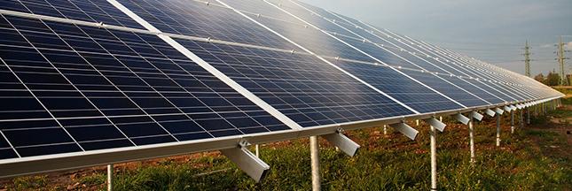 """Ukujima, mon amour : le """"solar sharing"""" à grande échelle"""