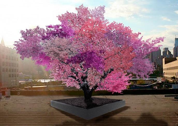 L 39 arbre aux 40 fruits prouesse environnementale ou trange cr ation page 2 of 2 page 2 - Arbre rose japon ...