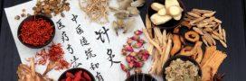 Aliments chauds et froids: l'équilibre d'après la tradition asiatique