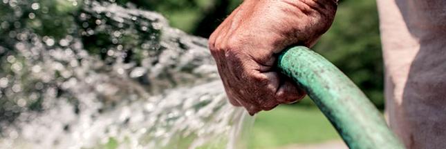 Jardin écologique : économiser l'eau en jardinant