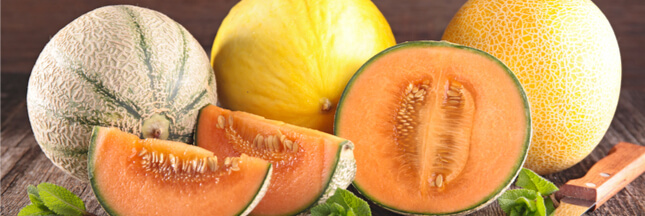 Légumes et fruits d'été : le melon