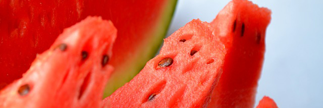 pasteque-melon-d-eau-tranches-fruits-ban