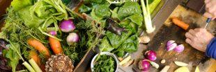 Recettes bio : 3 salades très vertes à déguster en été