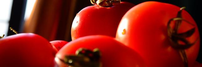 tomates-legumes-ban