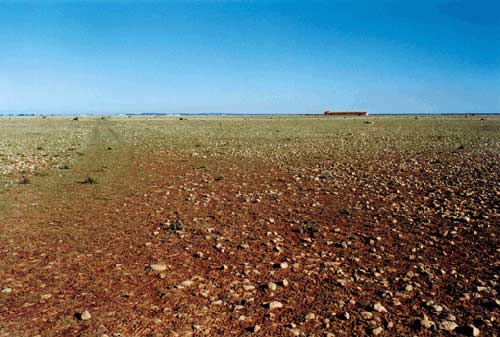 Plaine de la Crau