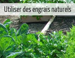 Utiliser des engrais naturels