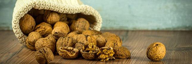 Les fibres alimentaires : sources de bienfaits