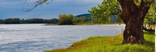 Etat des rivières en France : au milieu du gué