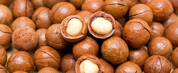 noix de macadamia bio santé bienfaits