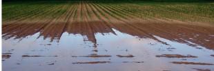 Le sol va-t-il se dérober sous nos pieds ?