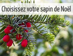sapin de noël naturel ou artificiel choix écologique