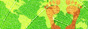 Empreinte écologique : les 20 pays les plus pollueurs