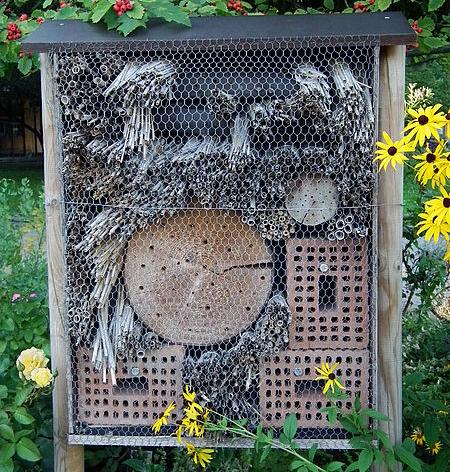 Lutte biologique: construisez un hôtel à insectes contre les ravageurs au jardin bio