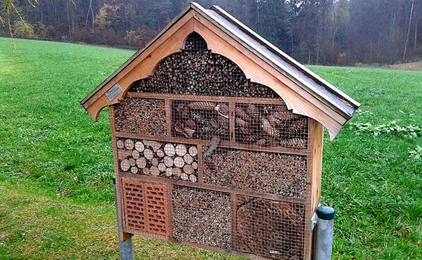 J 39 installe un h tel insectes dans mon jardin page 2 of - Cabane a insectes ...