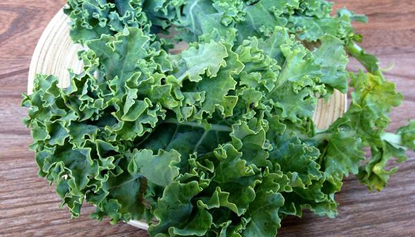 kale-chou-frise-legume-vert-01