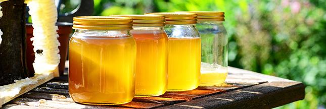 miel-abeilles-fleurs-00-ban