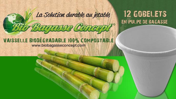 Bio Bagasse vaisselle jetable
