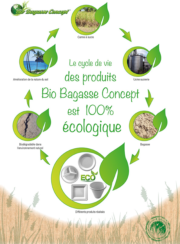 vaisselle jetable Processus Bio Bagasse Concept