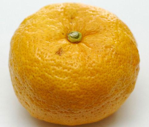 d'allure, le yuzu ressemble à une grosse mandarine à bosses (© Andrew c)