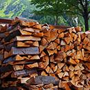 choix bois de chauffage