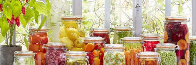 conserver les aliments; conservation des aliments