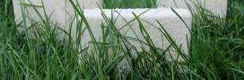 Habitat écolo high-tech: la maison en champignons