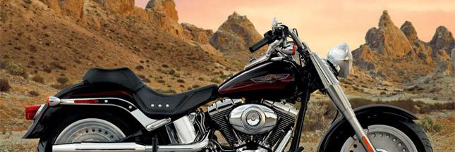 Les bikers Harley-Davidson veulent planter 50 millions d'arbres