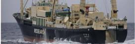 Pêche – Les ravages des navires usines (video)