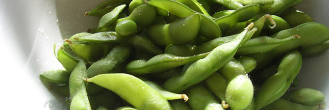 soja-haricot-alimentation-legume-vert-surgele