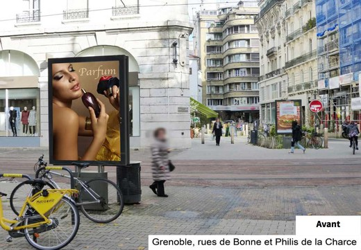 grenoble remplace ses panneaux publicitaires par des arbres. Black Bedroom Furniture Sets. Home Design Ideas