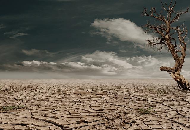 sol sécheresse