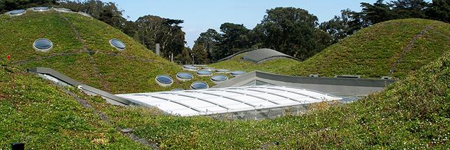 6 musées verts à découvrir absolument